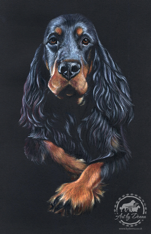 Gordon Setter Dog Portrait Art