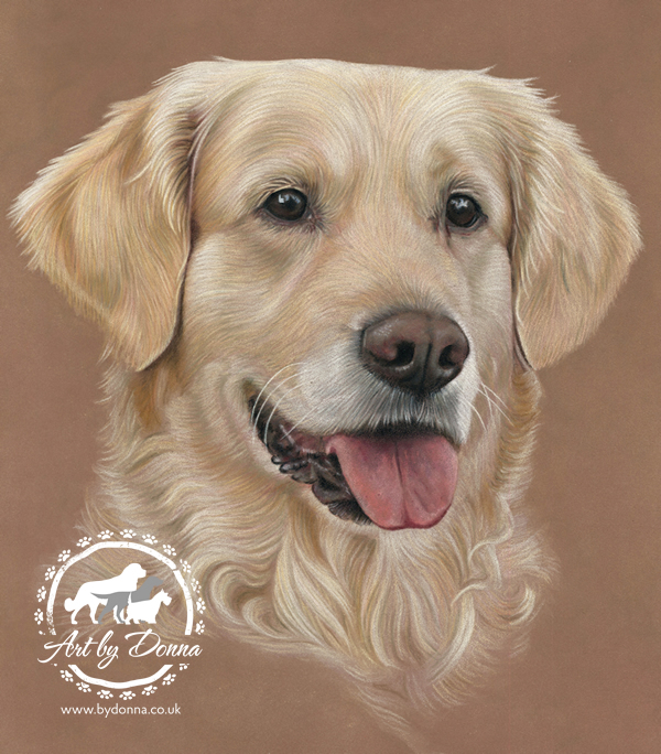 Golden_Retriever_Dog_Portrait_Hera