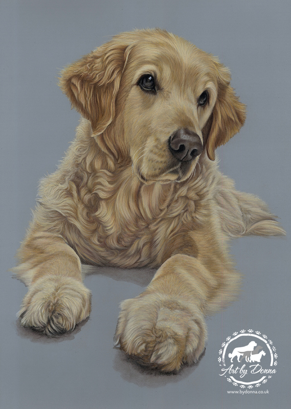 Golden Retriever Tribute - Memorial Portrait of Oscar