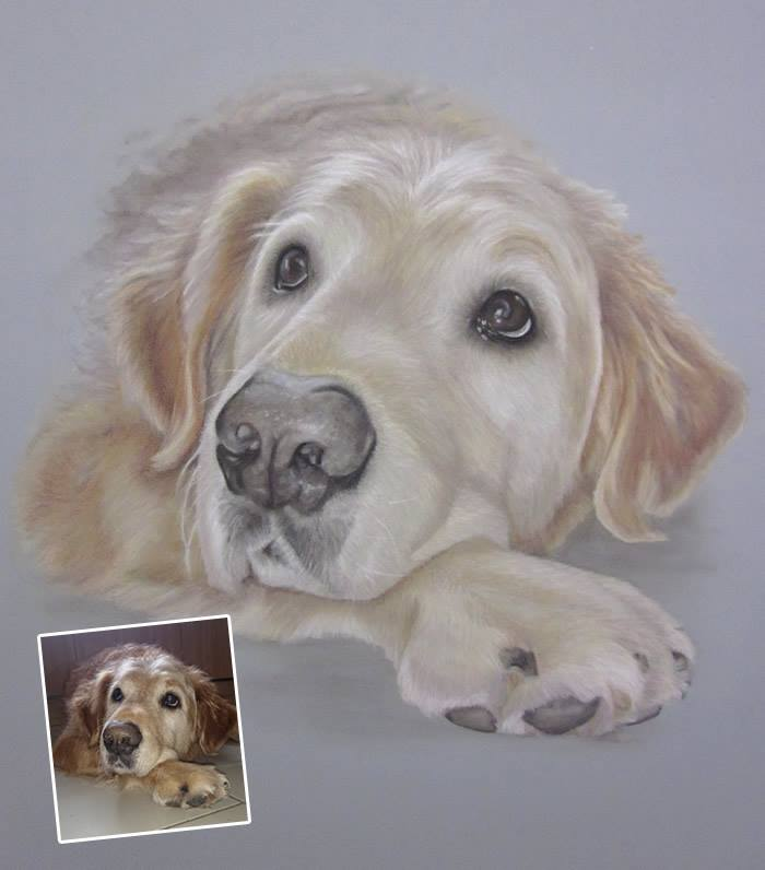 Golden Retriever Portrait - Oscar